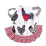 PINYUE Delantal de gallina con Silla de Montar de Pollo con Correa elástica Cubierta de protección de Plumas para la Espalda de gallinas Suministros para el Cuidado del Pollo